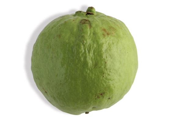 Guave (lat. Psidium guajava)