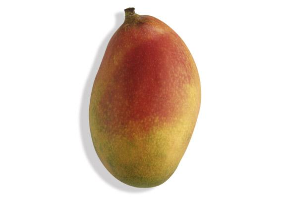 Mango (lat. Mangifera spp.)