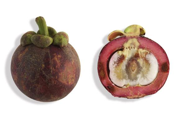 Mangostane (lat. Garcinia mangostana)