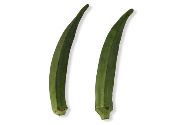 Okra (lat. Abelmoschus esculentus)