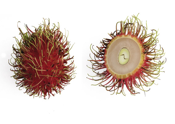 Rambutan (lat. Nephelium lappaceum)